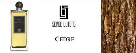 Аромат Cedre от Serge Lutens