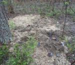 Житель Кадуя, закопавший труп своей девушки в лесу, приговорен к 9 годам колонии
