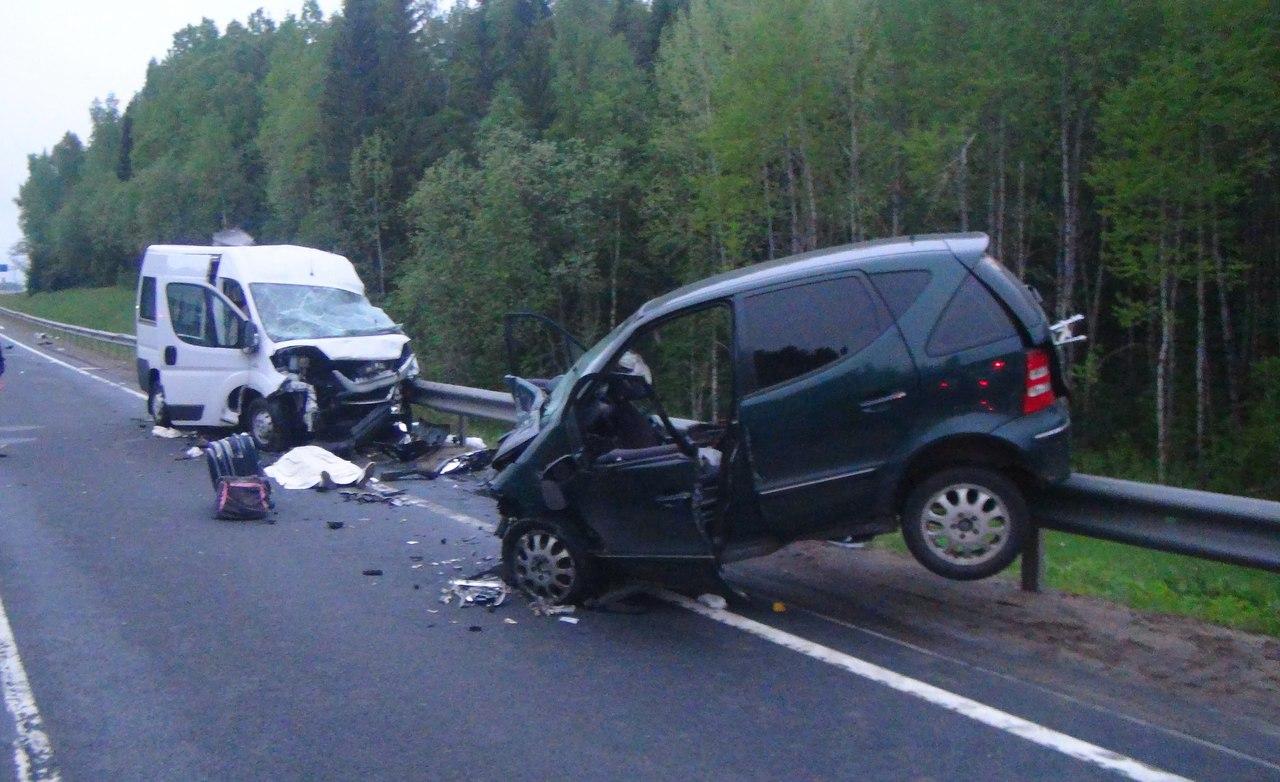 Родственники погибшей в ДТП студентки ВоГУ добиваются справедливого наказания для директора компании-перевозчика «М-8»