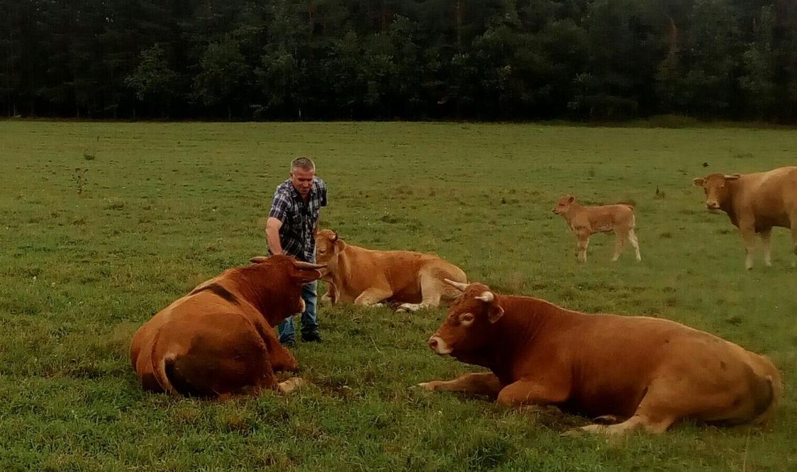 Житель Верховажского района за 25 лет создал крупную молочную ферму