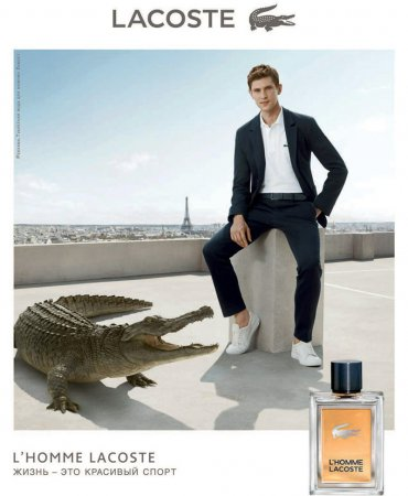 Аромат L'homme от Lacoste